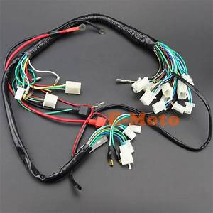 Electric Start Wiring Harness Wire Loom Pit Bike Atv Quads 50 70 90 110 125cc Go Kart New E Moto