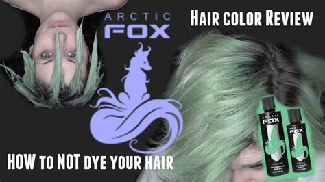 How To Not Dye Your Hairarctic Fox Hair Color Review