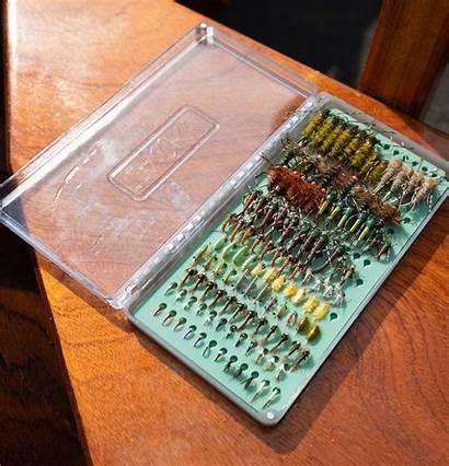 Fly Box Tacky Boxes Aah