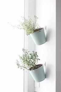 hanging herb planters indoor herb garden julie blanner