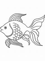Coloring Angelfish Fish Gaddynippercrayons sketch template