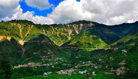 organised gangs looting forests  bhaderwah locals allege