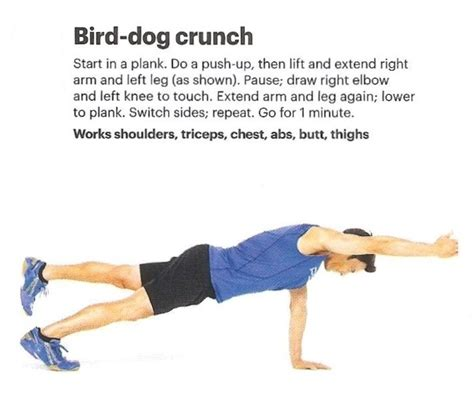 exercises bird abdominal dog crunch exercise birds push core multifidus workouts ab crunches dogs side pain physical therapy plank forward