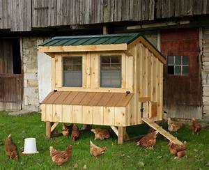Amish Natural Quaker  Chickencoop - 4 X 6