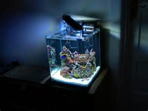 how to setup a nano tank ultimate reef