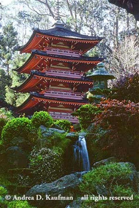 habitat nature photography japanese pagoda golden gate