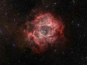 Space Images | Infrared Rose