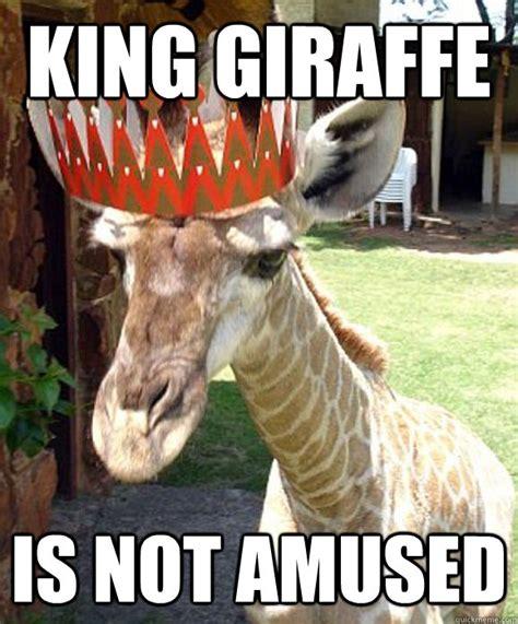 Meme Giraffe - 19 very funny giraffe images