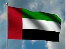 UAE Emirati man, woman found dead inside car in Fujairah