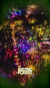 Forest Wallpaper (52+ immagini)