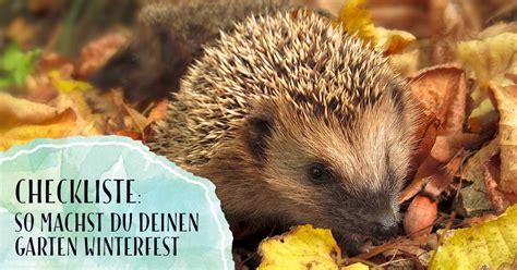 Garten Aufgaben Im Herbst by Garteln Im Herbst Mit Bl 252 Hendes 214 Sterreich Bl 252 Hendes