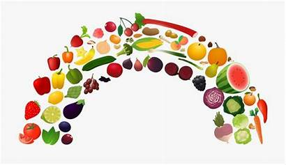 Clipart Plate Vegetables Nutrition Healthy Fruits Cartoon