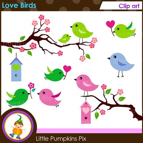 Cute Blue Love Birds