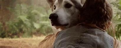 Arya Thrones Stark Direwolf Wolf Gifs Nymeria