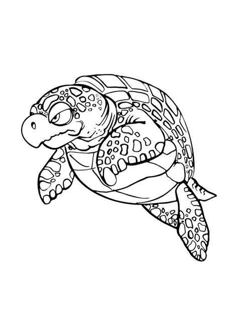 sea turtle coloring pages green sea turtle coloring page sketch coloring page