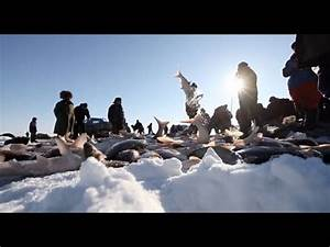Winter Fishing Season Begins on Northeastern China's ...