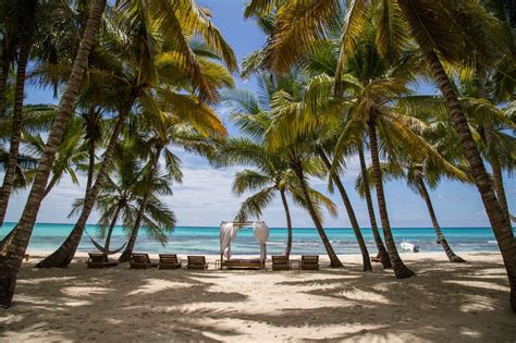 shore excursion vip  inclusive saona island la
