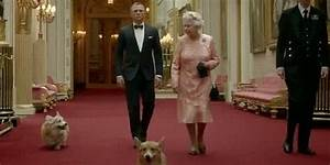 Queen's corgi dog dead ahead of her majesty's birthday ...