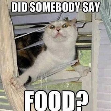 Eating Meme - did somebody say food funny meme picture