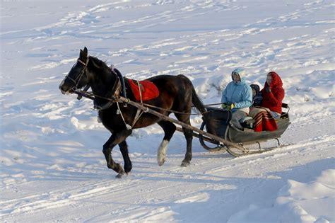 zirgu-seta-untumi-4-kamanas-ziema-celvezi.lv - Ceļveži.lv