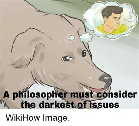 Wikihow Memes - funny wikihow memes of 2017 on sizzle patron deity