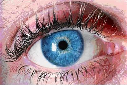 Eye Alcademics Eyes Edited Sports Multicolored