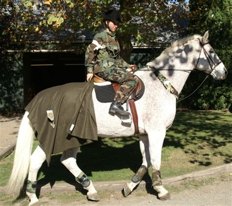 army horse  rider costumes  halloween horse