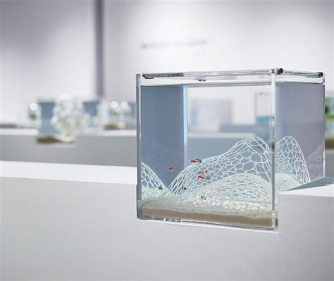 printed aquariums  printed aquarium