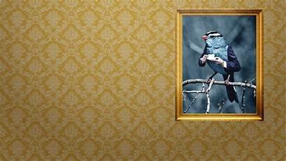 Classy Background Backgrounds Wiki Pixelstalk