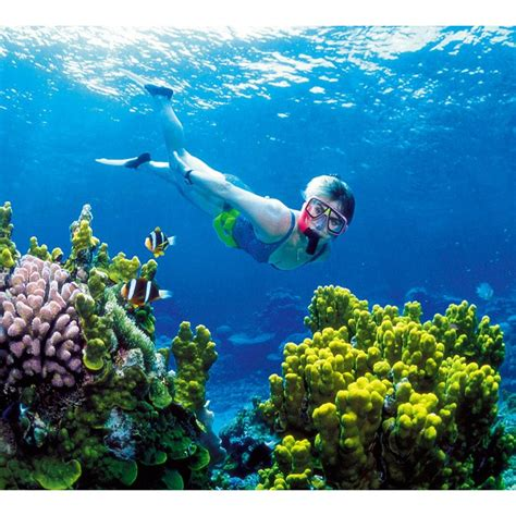Glass Bottom Boat And Snorkeling by Bali Snorkeling Glass Bottom Boat Turtle Island Elevenia