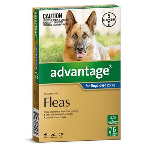 advantage  extra large dogs advantage flea control
