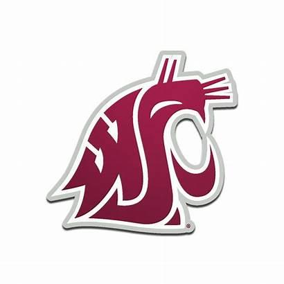 Washington State Cougars Emblem Gone Almost