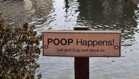 poop   beginners guide  reading   poop