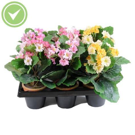 hortensia mini pot en barquette de 6 plante artificielle en pot maison et fleurs