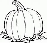 Pumpkin Coloring Printable Pages Halloween Pumpkins Printables Orange Google Cartoon sketch template