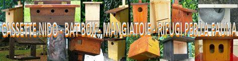 cassette per uccelli cassette nido bat box mangiatoie rifugi per la fauna