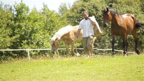 Bauer emanuel betreibt in der steiermark einen gnadenhof für aktuell 120 tiere wie pferde, esel und mulis. Pferdegnadenhof Edelweiss Gründer / Veganer Emanuel Wenk ...