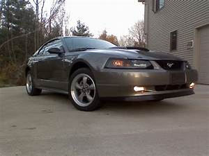 2002 Mineral Gray Mustang GT - Zac Rosboril '02 at AmericanMuscle.com - Free Shipping! - Free ...