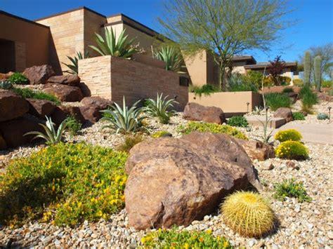 desert garden landscaping decorating yard with a variety of desert plants