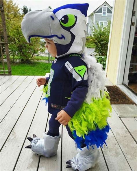 seattle seahawks images  pinterest seattle