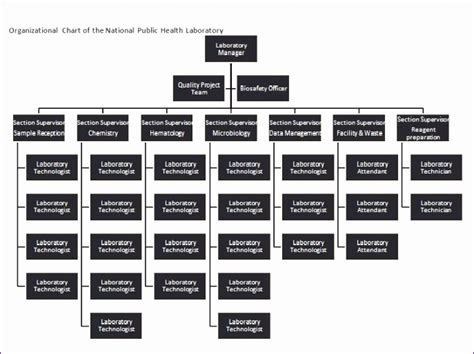 org chart template excel excel templates excel templates