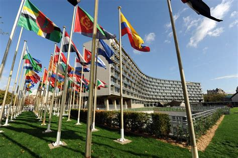 siege unicef sobre la unesco organización de las naciones unidas para
