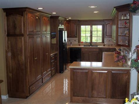 Modern Black Walnut Kitchen Cabinets