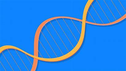 Genetic Testing Genes Influence Sexuality Debunked Study