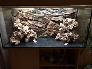 Aquarium Deko Steine : aquarium von gsigold malawi ~ Frokenaadalensverden.com Haus und Dekorationen