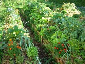 les 25 meilleures idees de la categorie jardin With marvelous idee amenagement jardin devant maison 10 les 25 meilleures idees de la categorie auvent pour porte