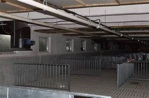 sow barn with smartflow ventilation system in bulgaria With barn ventilation systems