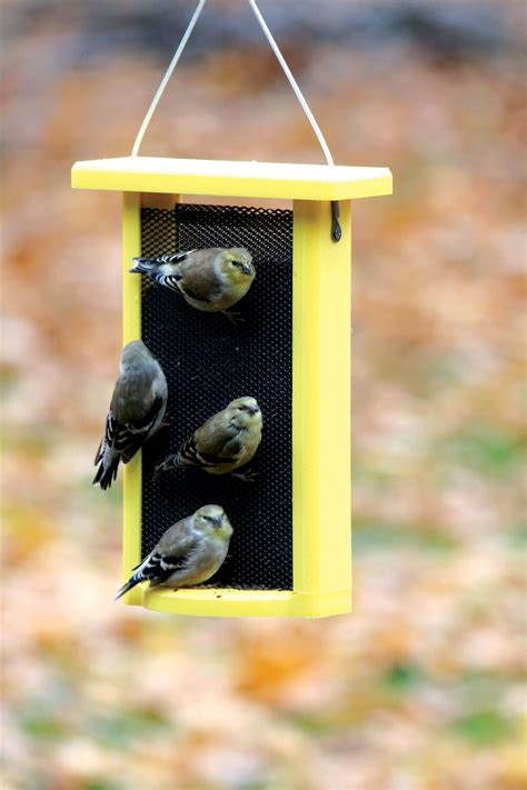 finch bird feeder bird s choice 1 5 qt yellow recycled magnet mesh finch