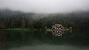 plants, beautiful,bolu, landscape, house, view pictures ...