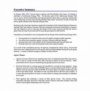 Fundraising plan template 7 free word pdf documents for Fundraising strategic plan template